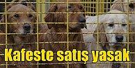 Pet Shop#039;larda kedi köpek kuş satışı yasaklanıyor