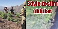 PKK'lı teröristler böyle teslim oldu