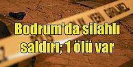 Bodrum'da gece kulübüne silahlı saldırı