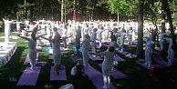 Doğada Yoga ile evrenle bütünleşme zamanı: Bolu Abant#039;ta Yoga Festivali