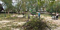 İstanbulda fırtınanın devirdiği ağaçlar kaldırılıyor