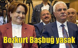 Akşener'in partisinde Bozkurt işareti ve Başbuğ yasağı