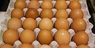 Fransa'da böcek ilaçlı yumurtalı ithal eden şirket sayısı 14'e ulaştı