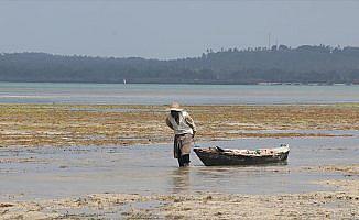Doğası zengin, halkı yoksul ada: Zanzibar