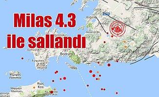 Son Depremler, Muğla Milas'ta deprem; 4.3
