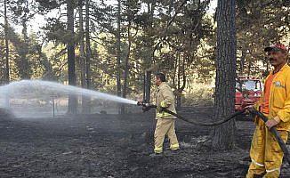 'Yangın savaşçıları'nın günlerdir alevlerle mücadelesi sürüyor