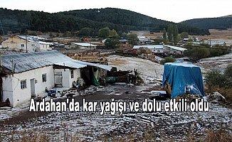 Ardahan'da kar yağışı ve dolu etkili oldu