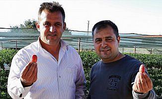 Balıkesirli itfaiyeciler çileğe yatırım yaptı