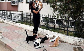 Okulda artan yemeklerle sokak kedilerini besliyor