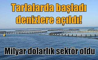 Balık çiftliklerinde son durum ;  Türk Kültür balıkçılığının dünü bugünü yarını