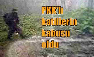 Fotokapanlar, PKK'lı teröristlerin kabusu haline geldi