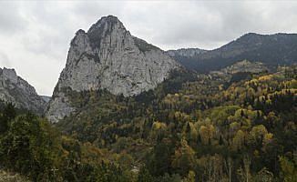Küre Dağlarında sonbahar renkleri görsel şölen sunuyor