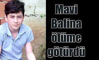 Mavi Balina, Ordulu genci intihar ettirdi: 142 ölüm intihar mercek altında
