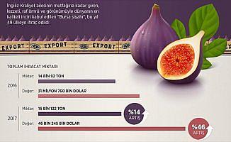 Bursa'da yetişti 49 ülkede tüketildi