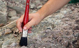 Dünyanın en eski yosun fosili 1 milyar yaşında