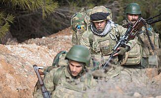 Afrin'de stratejik Burseya Dağı ve üç köy ele geçirildi