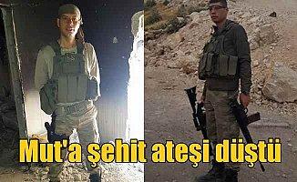 Mut Afrin şehidi Ali Gümüş'ü bekliyor