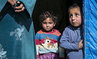 PYD/PKK'nın zulmünden kaçan Cinderesli aileler Türkiye'ye sığındı