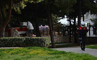 Antalya'da 'arı' operasyonu