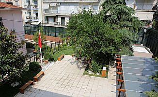 Atatürk Evi'ndeki asırlık nar ağacı tedavi edilecek