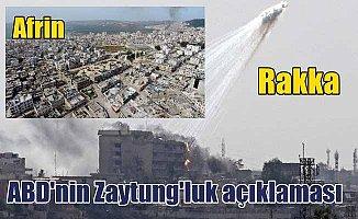Rakka ve Musul'u yakan ABD'den Zaytung'a taş çıkartan açıklama