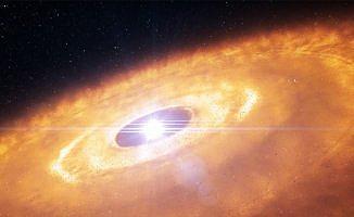 Genç yıldızların etrafında disklerin cümbüşü