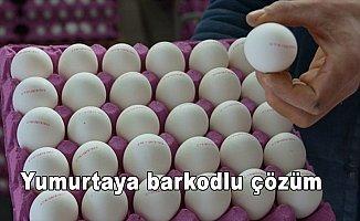 Yumurtaya barkodlu çözüm