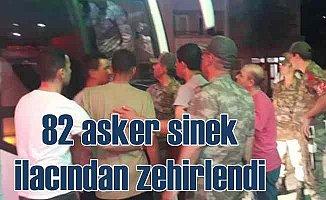 Amasya'da sinek ilacı 81 askeri hastanelik etti