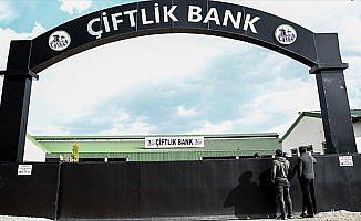 Bulgaristan'ın iade ettiği Çiftlik Bank firarisi adliyede