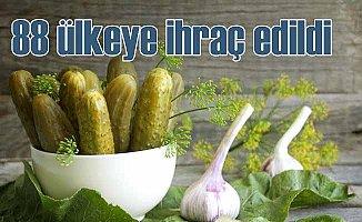 Türk salatalık ve kornişonu dünya sofralarını süslüyor