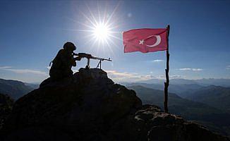 Bitlis'in Hizan ilçesinde 10 terörist etkisiz hale getirildi