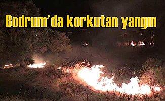 Bodrum Konacık'ta yangın evlerin etrafını sardı