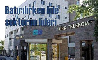 Türk bankalarını dolandıran şirket sektör birincisi oldu