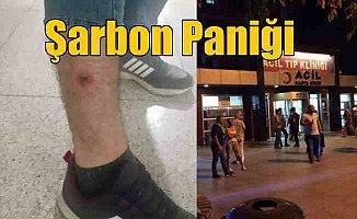 İstanbul'da şarbon alarmı: Vatandaşlar hastaneye akın etti