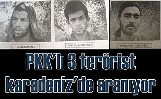 Polis ve jandarma, Karadeniz'de 3 teröristin peşinde
