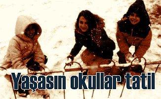 Ankara, Eskişehir, Bolu ve Afyon'da okullar tatil