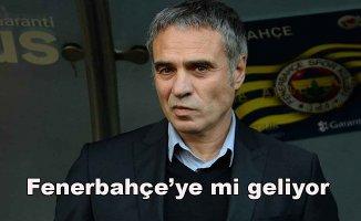 Fenerbahçe'de süpriz Ersun Yanal gelişmesi