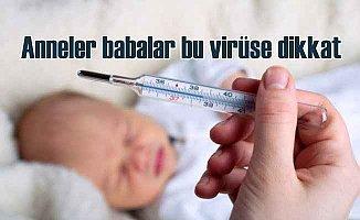 RSV virüsü: Ocak Şubat aylarında zirve yapıyor