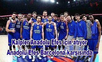 Anadolu Efes Final Four için sahada