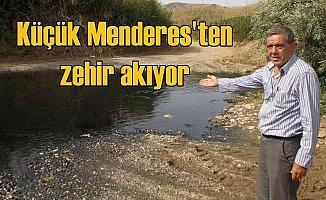Kirlilik Küçük Menderes'i ve üreticiyi bitirdi