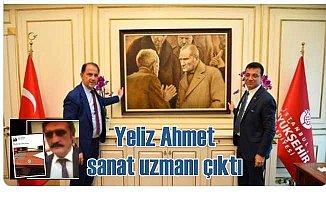 Yeliz Ahmet, sanat uzmanı kesildi