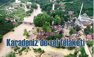 Sel suları Düzce, Eregli'yi bastı, hasar büyük