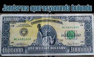 Uşak'ta 1 milyon dolarlık banknot operasyonu