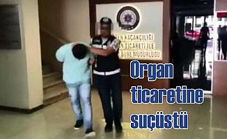 Organ kaçakçısı üç kişiye suçüstü