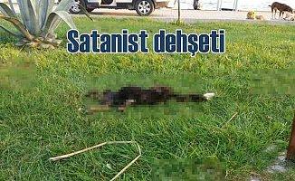 Bursa'da satanizm iddiası ortalığı karıştırdı