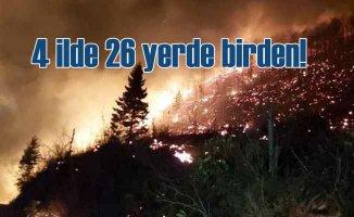 Karadeniz'i saran orman yangınları sabotaj mı?
