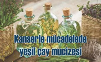 Kanser tedavisinde yan etkileri azaltan bitkiler