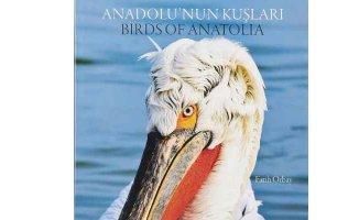 'Anadolu'nun Kuşları' kitapçılarda