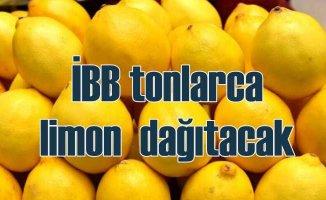 İhraç edilemeyen limonlar, İBB tarafından vatandaşlara dağıtılacak