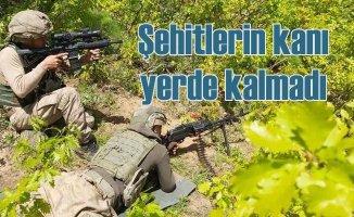 Bitlis'te operasyon | Başına ödül konulan terörist öldürüldü